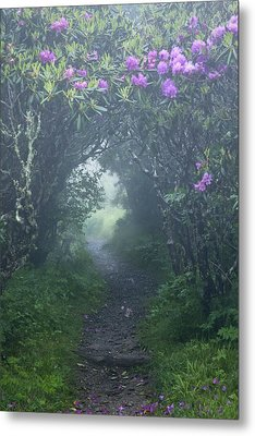 Fairy Path Metal Print