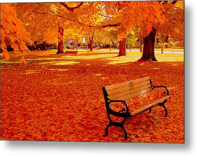 Fall Bench  Newburyport Ma Metal Print