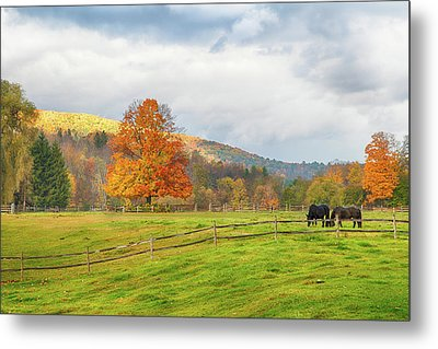 Metal Print featuring the photograph Fall Colors After The Storm. by Jeff Folger