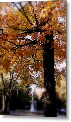 Fall Colors And Fountain Metal Print by Martin Morehead