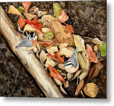 Fall Nuthatch Pair Metal Print