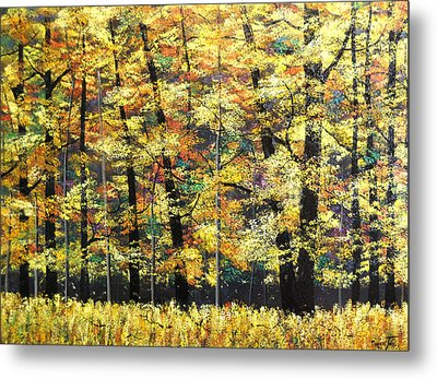 Fall Oaks In Yosemite Metal Print by Connie Tom