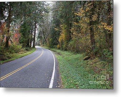 Fall Road Washington Metal Print