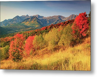 Metal Print featuring the photograph Fall Splendor With Mount Timpanogos. by Johnny Adolphson