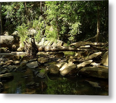 Falls Park Metal Print by Flavia Westerwelle