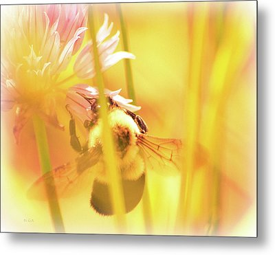 Fame Is A Bee Metal Print by Bob Orsillo