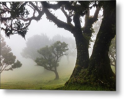 Fanal Metal Print by Evgeni Dinev