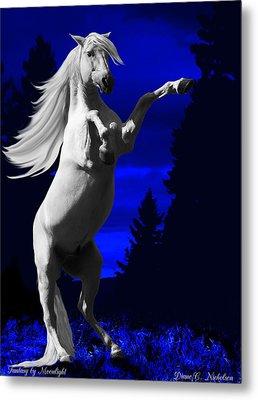 Fantasy By Moonlight Metal Print by Diane C Nicholson