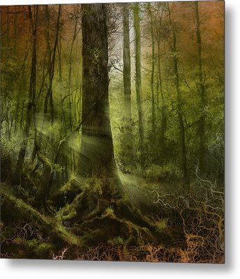 Fantasy Forest 2 3 Metal Print