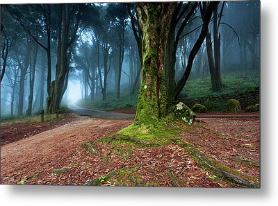 Metal Print featuring the photograph Fantasy by Jorge Maia
