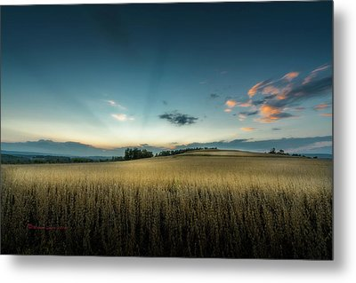Farmers Field Metal Print by Marvin Spates