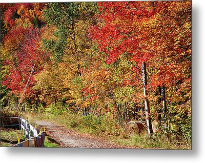 Metal Print featuring the photograph Farmers Path Of Fall Colors by Jeff Folger