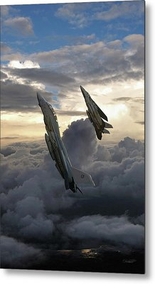 Fast Eagle Section Metal Print
