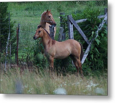 Father And Son Metal Print by Rick Friedle