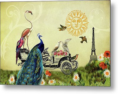 Feathered Friends In Paris, France Metal Print by Peggy Collins