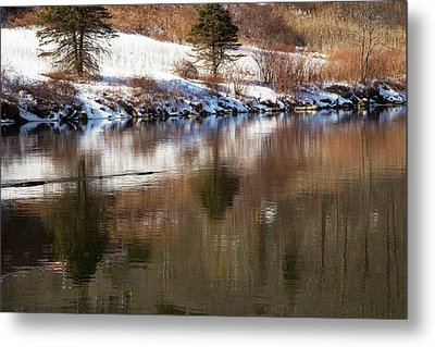 February Reflections Metal Print by Karol Livote