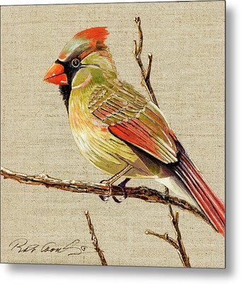 Metal Print featuring the painting Female Cardinal by Bob Coonts