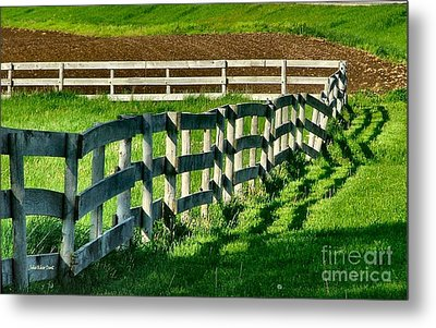 Fences And Shadows Metal Print