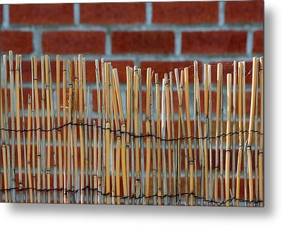 Fencing In The Wall Metal Print