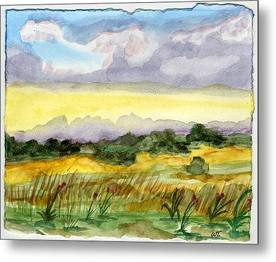 Field And Sky 2 Metal Print