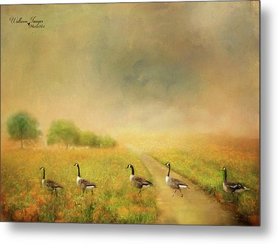 Metal Print featuring the photograph Field Trip by Wallaroo Images