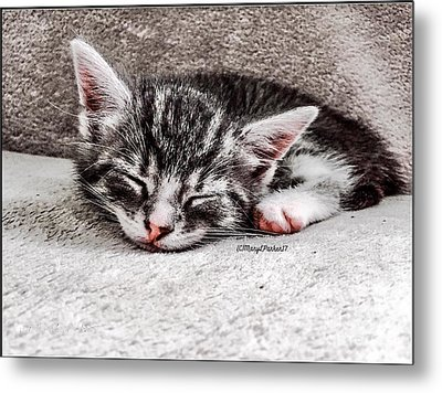 Finally Asleep  Copyright Mary Lee Parker 17  Metal Print