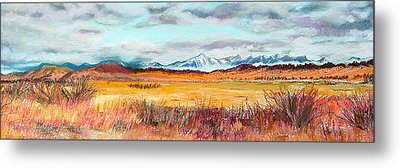 Fire And Ice Metal Print by Lucinda  Hansen