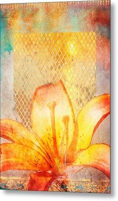 Fire Lily Metal Print by Aimee Stewart