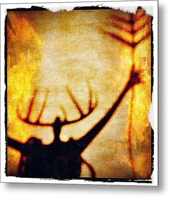 Metal Print featuring the photograph Fire Shaman by Paul Cutright