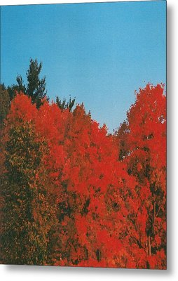 Firey Fall Metal Print