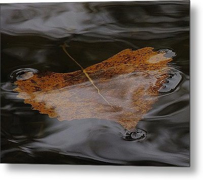 Float Away Metal Print