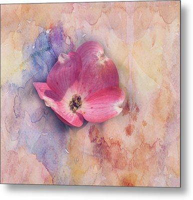 Floating Pink Bloom Metal Print by Toni Hopper