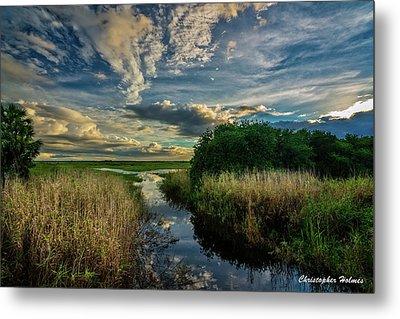 Florida Landscape Metal Print