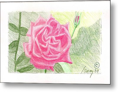 Metal Print featuring the drawing Flower 2 - The Confused Rose by Rod Ismay