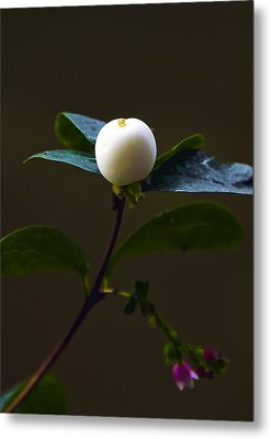 Flower Ball Metal Print by Svetlana Sewell