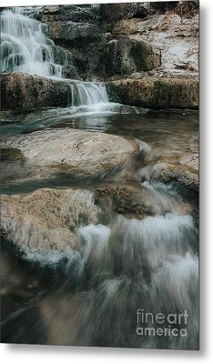 Metal Print featuring the photograph Flower Park by Iris Greenwell