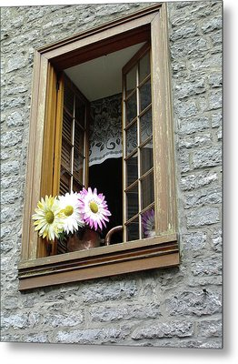 Metal Print featuring the photograph Flowers On The Sill by John Schneider