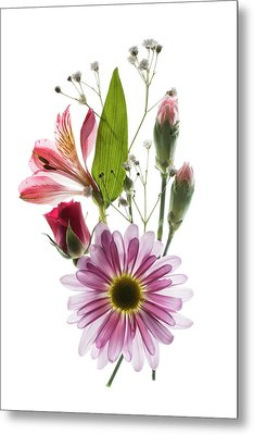 Flowers Transparent 1 Metal Print