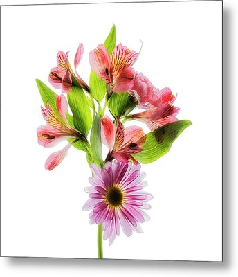 Flowers Transparent  2 Metal Print