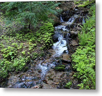 Metal Print featuring the photograph Flowing Creek by Ben Upham III