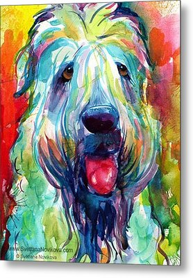 Fluffy Wheaten Terrier Portrait By Metal Print