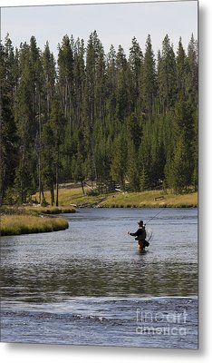 Fly Fishing In The Firehole River Yellowstone Metal Print