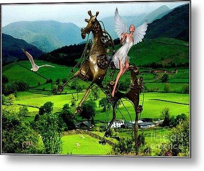 Fly In The Mountains Metal Print