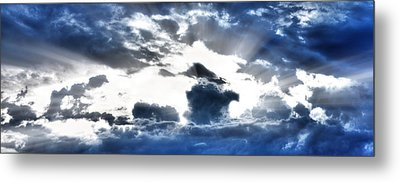 Metal Print featuring the photograph Flying High by Anthony Rego