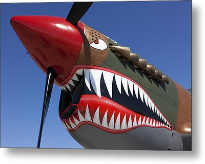 Flying Tiger Plane Metal Print by Garry Gay