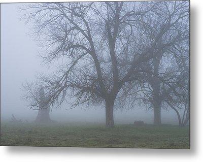 Foggy Morning Metal Print by Randy Bayne