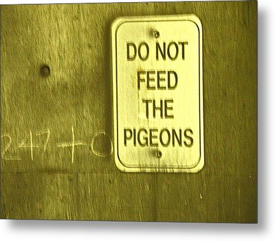 For The Birds Metal Print