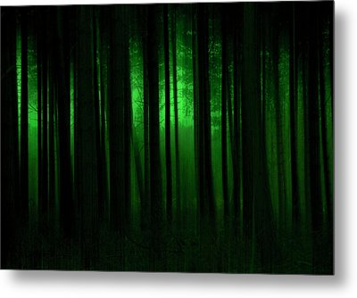 Forest Abstract03 Metal Print by Svetlana Sewell
