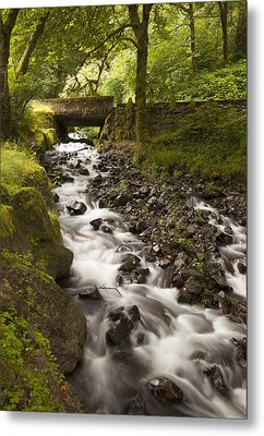 Forest Bridge - Columbia River Gorge Metal Print by John Gregg
