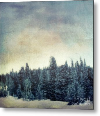 Forest For The Trees Metal Print by Priska Wettstein
